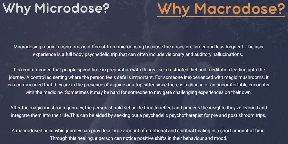 Macrodosing magic mushrooms